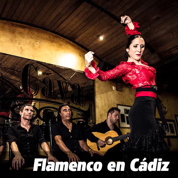 ticket_flamenco_e
